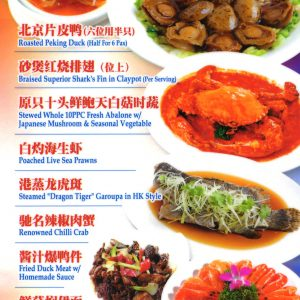 Peking-Duck,-Abalone,-Shark's-Fin-&-Seafood-Set